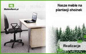 Plantacja choinek – MebloRent zapewnia komfort pracy