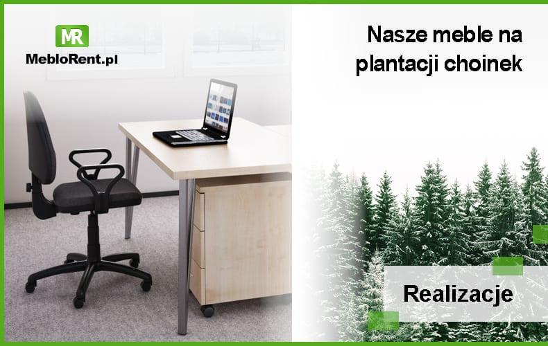 You are currently viewing Plantacja choinek – MebloRent zapewnia komfort pracy